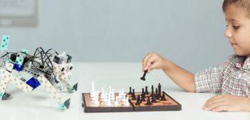 Robot enfant, plus qu'un jeu ?